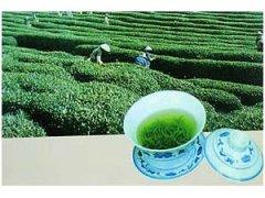 梅龙茶包装机